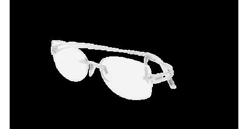 SilhouetteLight Attraction (4469)  4489